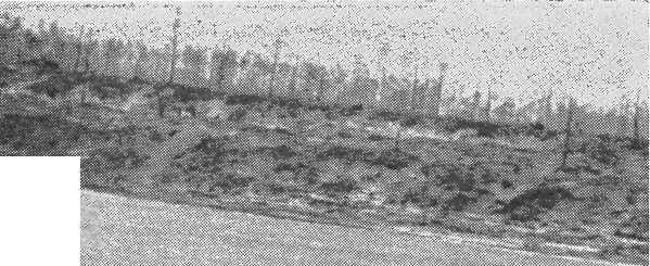 7d574992925 Нашим командованием создана специальная контрбатарейная артиллерийская  группа для подавления вражеской артиллерии в момент ее налетов на поезда.